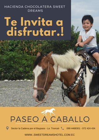 La Troncal, Equador: Contamos con paseo a caballo  en nuestras cabalgatas puedes disfrutar de la casa del árbol, la casa de las aves y degustar de un delicioso guarapo