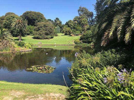 الحدائق النباتية الملكية بـ ملبورن