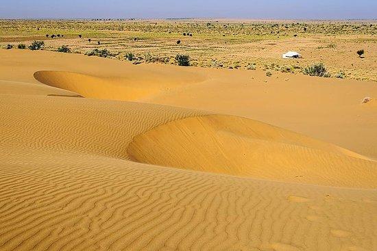 Jaisalmer en natt to dager privat tur