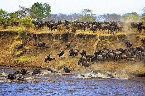 3 Days Tanzania Classic Safari