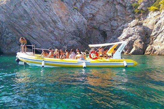 Mañana mar safari