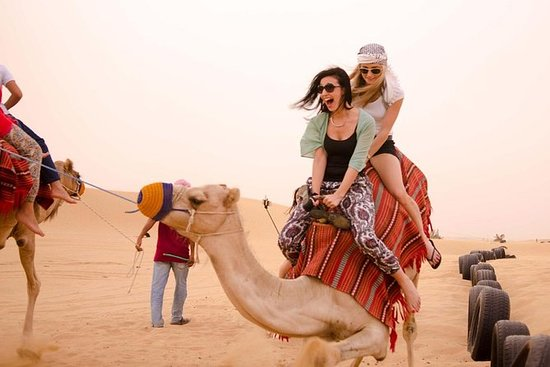 Desert Experience: Camel Safari with...