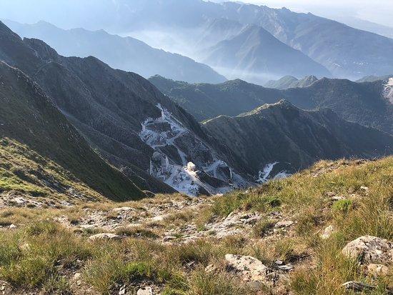 Carrara Photo
