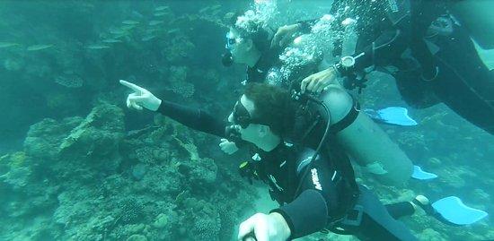 Mezz'ora di immersione non basta... ;-)