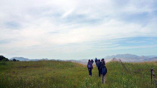 VacuaMoenia - Passeggiare in ascolto del paesaggio