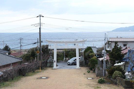 境内からは海が良く見えます。