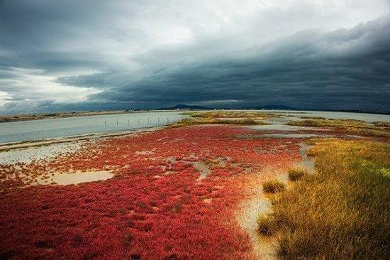 Burgas, Bulgaria: Атанасово озеро, солёное и грязевое озеро в городе Бургас