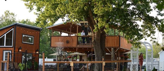Renaissance Wine Garden: Patio with 2 story tree house deck and musical instrument fountain