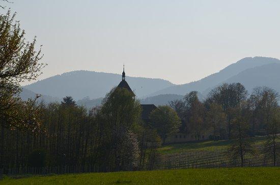 Siebeldingen, ألمانيا: Geilweiler Hof, Rebenforschungsanstalt zwischen Siebeldingen und Burrweiler, hier ein Herrlicher Blick zum Pfälzer Wald