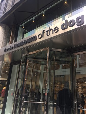 The American Kennel Club Museum of the Dog