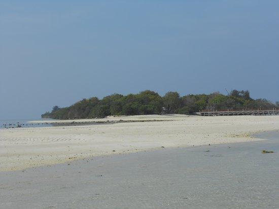 Seram Island, Indonesia: Pulau Kassa adalah salah satu destinasi andalan Kabupaten Seram Barat, merupakan pulau kecil di tengah kawasan Teluk Piru, yang dapat dijangkau dari Pulau Ambon, Negeri Kaibobo, Waisarissa juga Ariate dan Katapang, Merupakan Petuanan Negeri Kaibobo yang memiliki luas daratan 2,9 ha. Akses melalui negeri Kaibobo hanya 15 menit saja dengan menggunakan speedboat 15 PK. Di pulau ini sudah ada Resort yang dkelola Dinas Pariwisata Kabupaten SBB.
