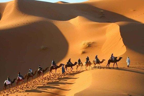Recorrido de 2 días por el desierto...