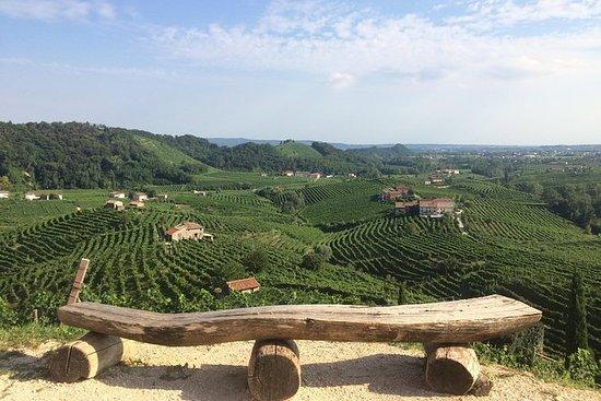 Route des vins et dégustation au pays...