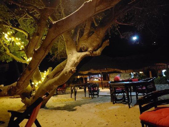 Puerto Angel Photo