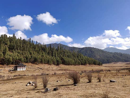 Wangdue Phodrang District, Bhutan: Phobjikha Valley (Switzerland of Bhutan)