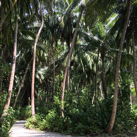 Luxury Privacy Coldish Island