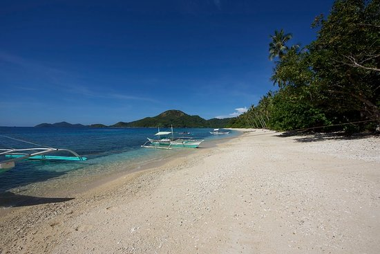 Beach - Picture of Linapacan Tourists Camp, Palawan Island - Tripadvisor