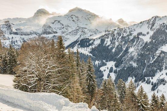Snow Beach Lodge Metsch: Aussicht von der Terrasse