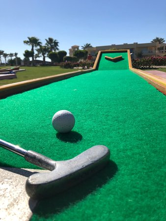 Royal Albatros Moderna : Il resort