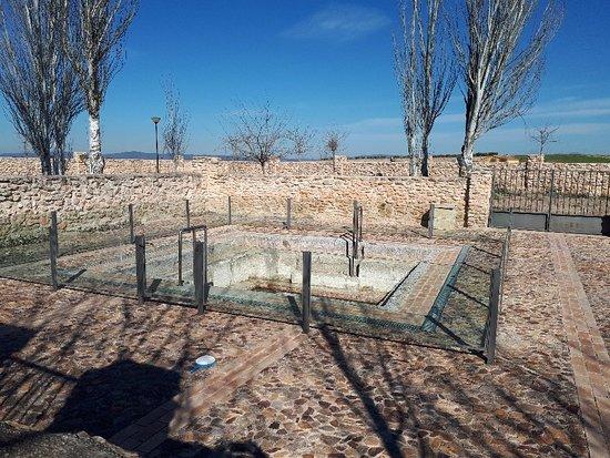 Carrion de Calatrava, İspanya: Baños del hervidero