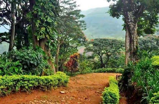 Province centrale, Sri Lanka: Kelebokka,  Central Province     Nature lovers ❤❤