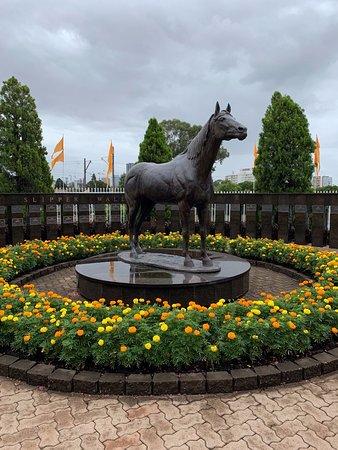Rosehill Gardens Racecourse: Golden Slipper