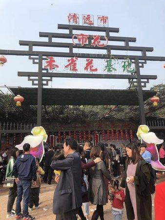 Restauranter i Qingyuan