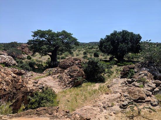 Northern Tuli Game Reserve, Botswana: Landscape