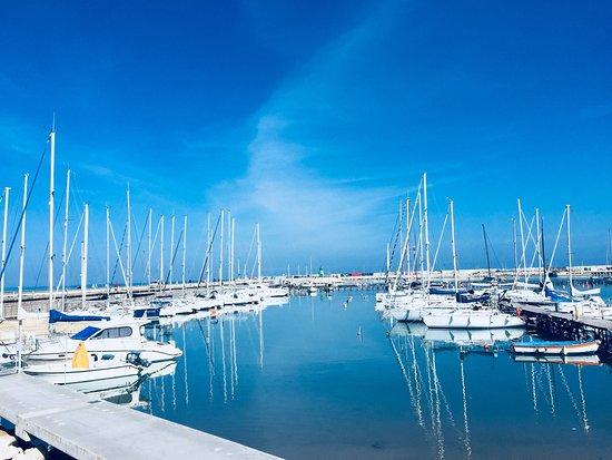 Porto Turistico di Civitanova Marche