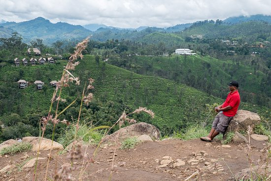 Sunbird Lanka Tours & Travels: Mohan, our wonderful driver from Sunbird Lanka Tours on a walk in Ella.
