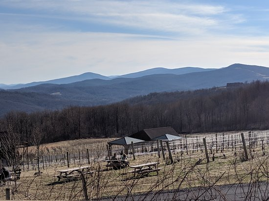 Linden, VA: Fox Meadow Winery - 3-16-2019 - view from the tasting room deck