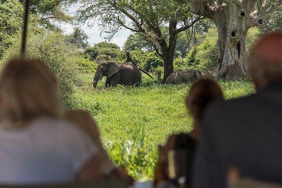 Ruaha National Park, Tanzania: Lunch at Mdonya Old River Camp