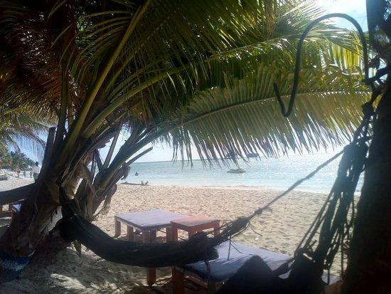 Rocky Cay : mala atención