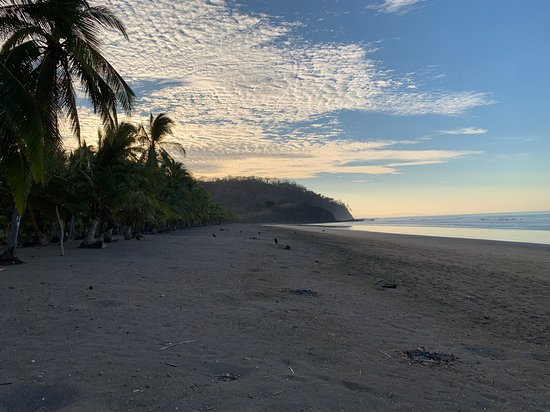 Bejuco, Costa Rica: Good morning from Corozalito!