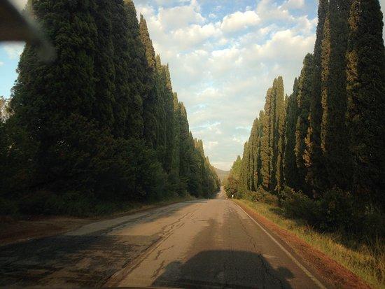 Castagneto Carducci, Italie : Uno dei luoghi più belli della Toscana