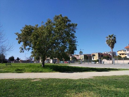 Parco Urbano Camaldoli Sud
