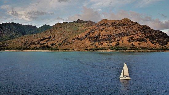 Waikiki Catamaran Charters