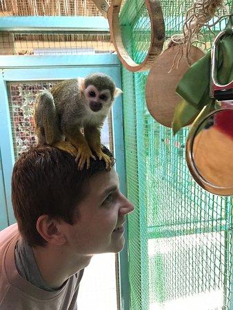 Orekhovo-Zuevo, Russia: Посетили контактный зоопарк по совету подруги и ничуть не пожалели 😍 это замечательное место, которое я очень рекомендую посетить как детям, так и взрослым... дружелюбный персонал, который расскажет вам о зверятах, безумно милые животные и прекрасное времяпровождение.