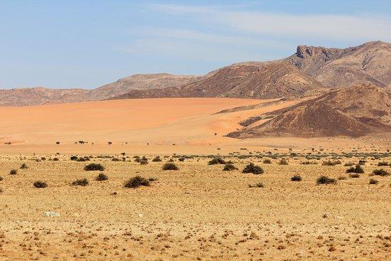 Namib-Naukluft Park, Namibia: paesaggi nel Namib Naukluft Park