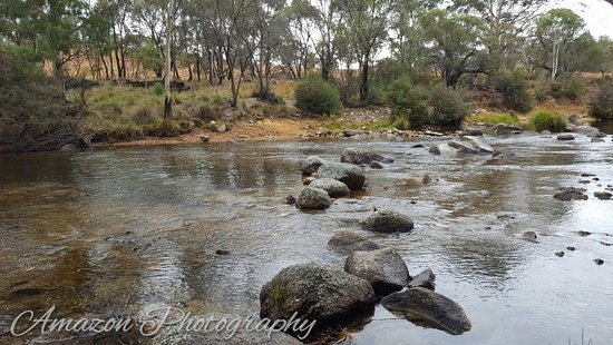 Thredbo River Track