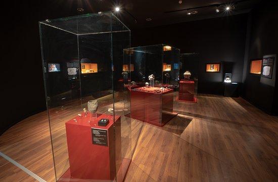 Museo de Nerja: Sala -1. La Cueva de Nerja.