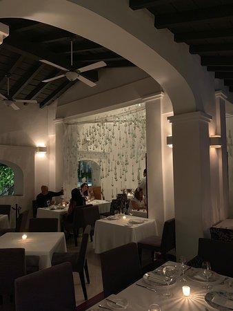 Fine dining in the jungle