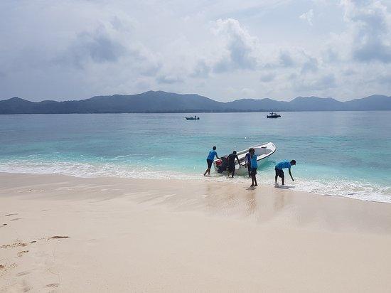 Cousin Island, Seychelles: ile Cousin