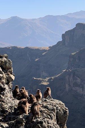 Amhara Region, Etiopia: Views into the gorge