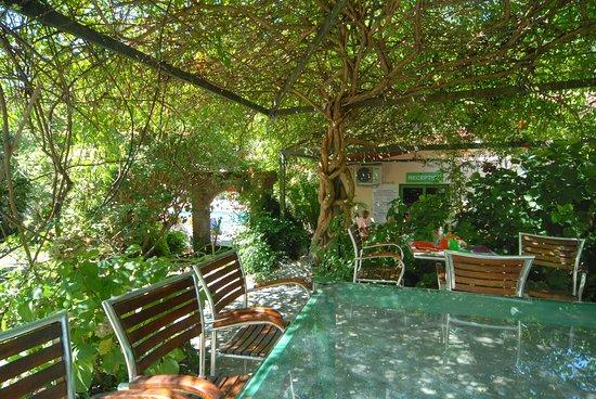 Isolabona, Italia: Campsite's pergola