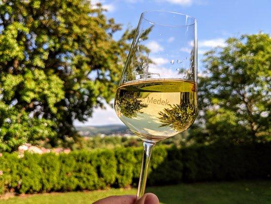 Medek Winery