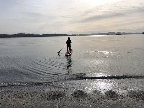 Salt Spring Island Paddle Board Company