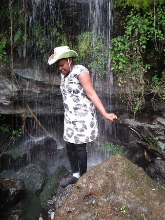 Mount Elgon National Park: At Kitum cave, Mt Elgon, Kenya. This is a lovely place to visit for both adventure and bird watching.