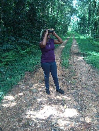 Mount Elgon National Park: Bird watching activity at Mt Elgon, Kenya.