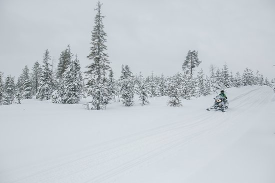 Kuusamo, Suomi: Snowmobile track around Ruka Ski Resort